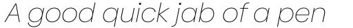 Biennale Thin Italic sample
