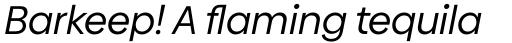 Biennale Regular Italic sample