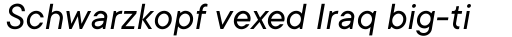 TT Commons Variable Italic sample