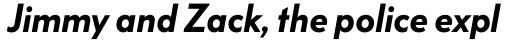 FF Bauer Grotesk W1G Demibold Italic sample