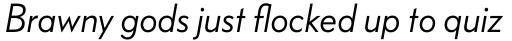 FF Bauer Grotesk W1G Italic sample