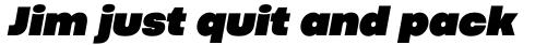 Codec Pro Ultra Black Italic sample
