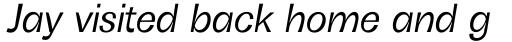 Boring Sans B Italic sample