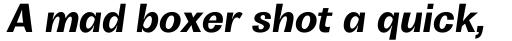 Boring Sans B Bold Italic sample