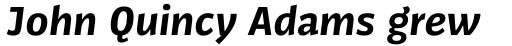 FF Kaytek Sans Bold Italic sample