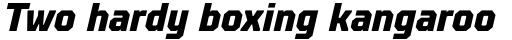 TT Octosquares Condensed ExtraBold Italic sample