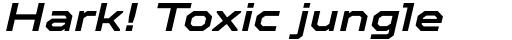 TT Octosquares Expanded DemiBold Italic sample