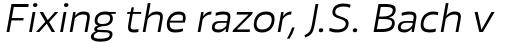 Blom Light Italic sample