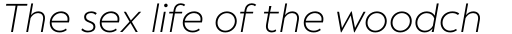 Facundo Light Italic sample