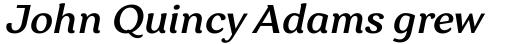 Garbata Medium Italic sample