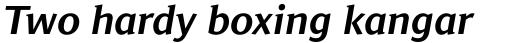 Jaqen Semi Bold Italic sample