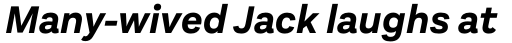 Aestetico Bold Italic sample