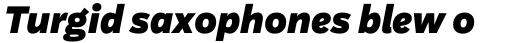 Aestetico Formal Black Italic sample