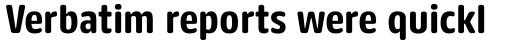 FF Kaytek Rounded Bold sample