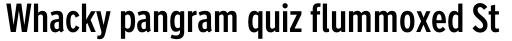 FF Nort Headline Regular sample