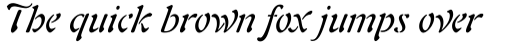 Freeform 721 Std Italic sample
