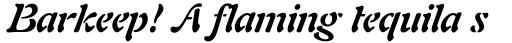 Freeform 721 Std Bold Italic sample
