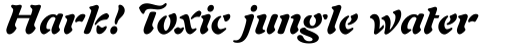 Freeform 721 Std Black Italic sample