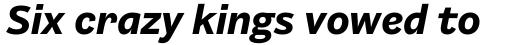 Barnet Sans Bold Italic sample