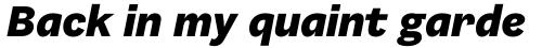 Barnet Sans Heavy Italic sample