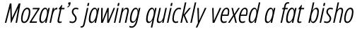 Eastman Condensed Compressed Regular Offset Italic sample