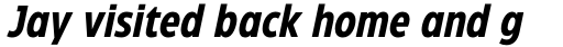 Eastman Condensed Bold Italic sample