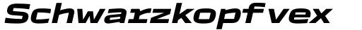 TT Autonomous Bold Italic sample