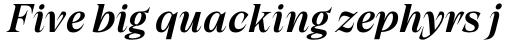 Grand Cru Medium S Italic sample