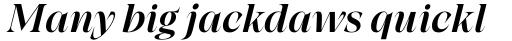 Grand Cru Medium M Italic sample