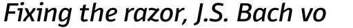 Domotika Pro Italic sample