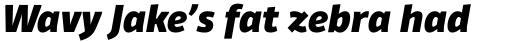 Domotika Pro Heavy Italic sample