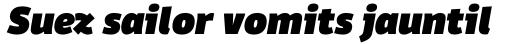 Domotika Pro Black Italic sample