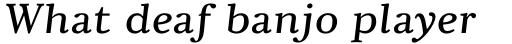Pyke Micro Italic sample