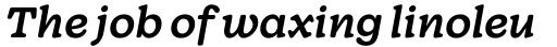 Wonder Medium Italic sample