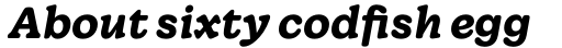 Wonder Bold Italic sample