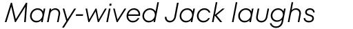 TT Fors Light Italic sample