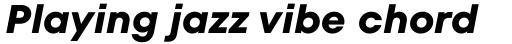 TT Fors Bold Italic sample