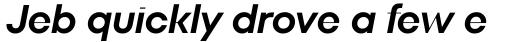 TT Fors Display DemiBold Italic sample