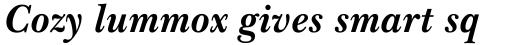 Baskerville Std Bold Italic sample