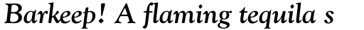 Goudy Old Style Std Bold Italic sample