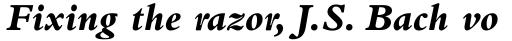 Bembo ExtraBold Italic sample