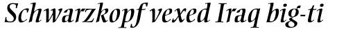 Ellington Italic sample