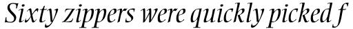 Ellington Light Italic sample