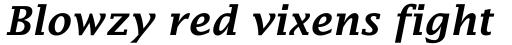 Lucida Fax Demibold Italic sample
