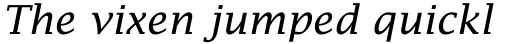 Lucida Fax Italic sample