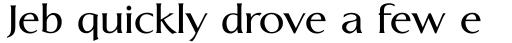 Linotype Aperto Com Semi Bold sample