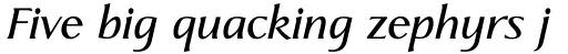 Linotype Aperto Com Semi Bold Italic sample