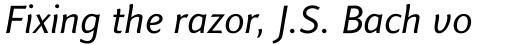Finnegan Italic sample