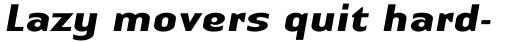Linotype Authentic Sans Bold Italic sample