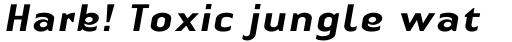 Linotype Authentic Sans Medium Italic sample